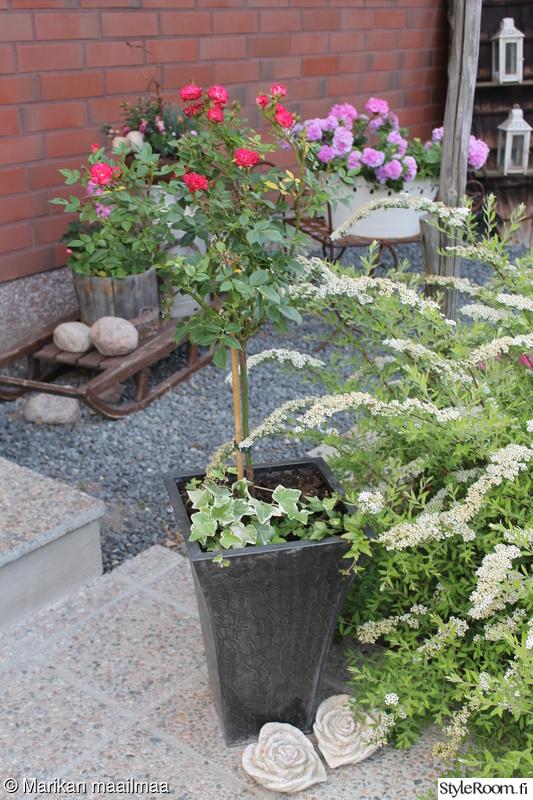 puutarha,kesä,puutarhasomiste,puutarhaidea