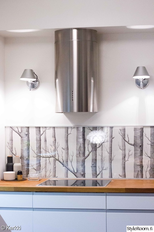 Kuva keittiö  Kompakti ja selkeä keittiö  Karkki