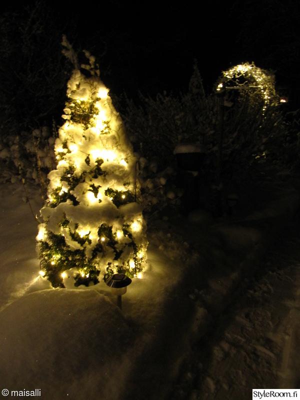 talvi,lumi,valosarja,tuija,polku