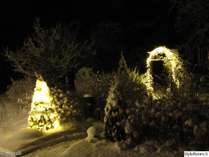 talvi,puutarha,jouluvalot,lumi,valosarja