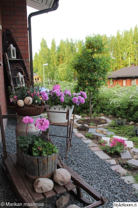 kukkapenkki,köynnöstuki,istutukset,maitotonkka,kukkaistutus