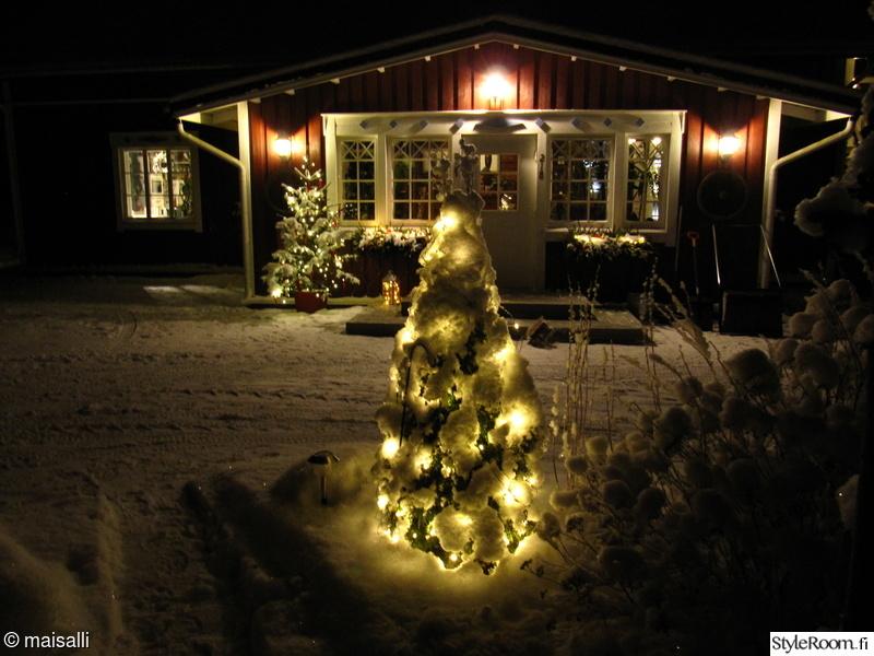 talvi,puutarha,jouluvalot,joulukuusi,kuisti