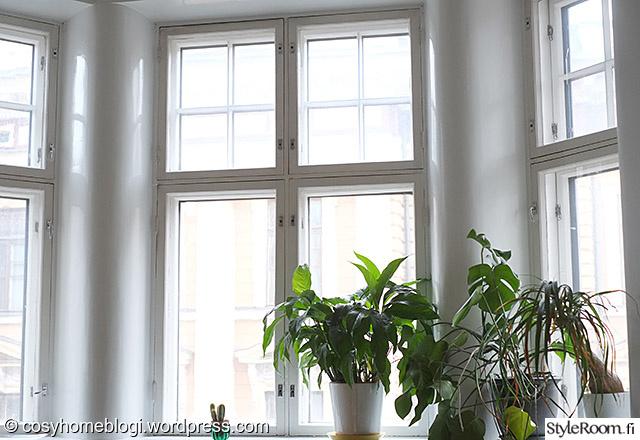 Kuva olohuone  Kodin viherkasvit ja muut kukkivat