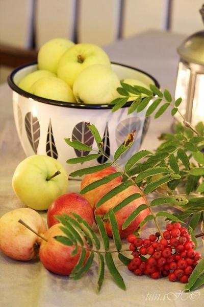 syksy,syksyinen,omena,pihlajanmarjat,syksyinen asetelma