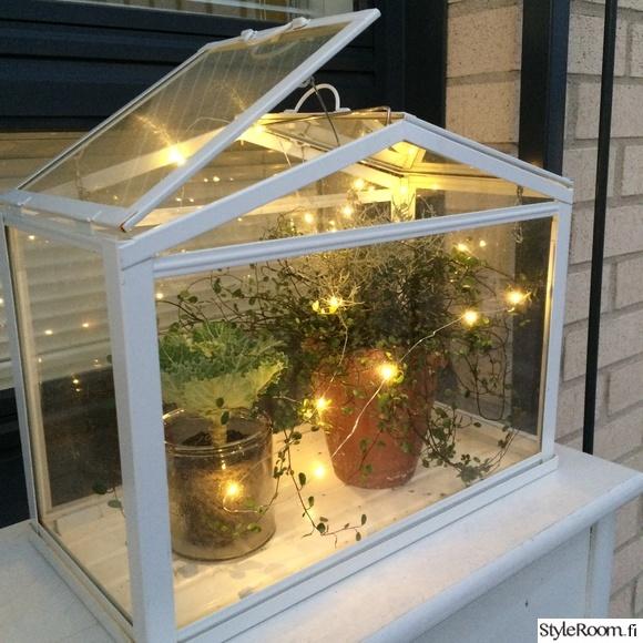 piha pöytä,syksyinen,terassi,tunnelmaa,kasvit