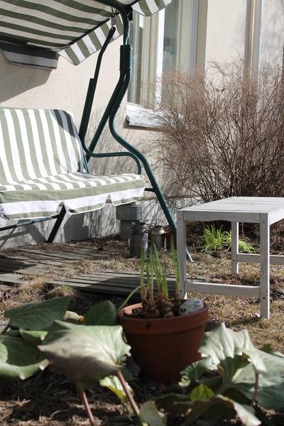 piha,keinu,puutarha,kasvit
