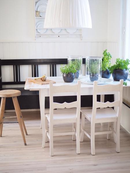 Bild nr 3  Yrttitarha keittiönpöyDällä av Mylittlesilverlinings