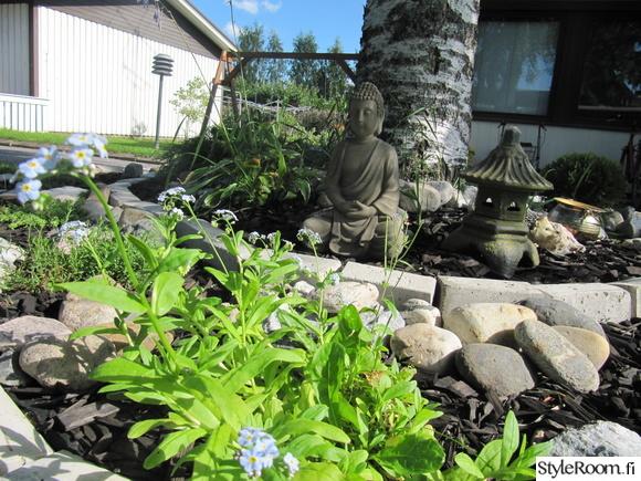 piha,puutarha,kivet,patsas,kasvit